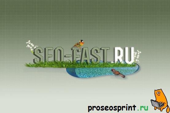 SEO FAST RU отзывы,Сайт SEO FAST